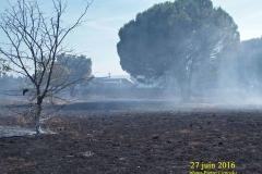 incendie_sur_l_aire_du_31
